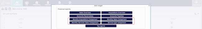 TINA financial reports widgets