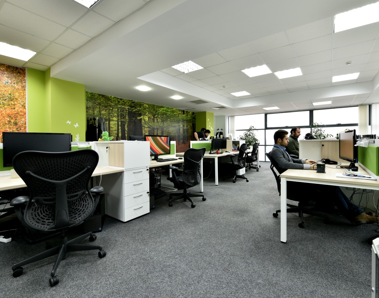dcs plus office